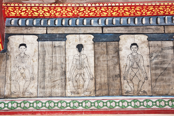 paintings in temple Wat Pho teach Acupuncture and fareast medici Stock photo © meinzahn