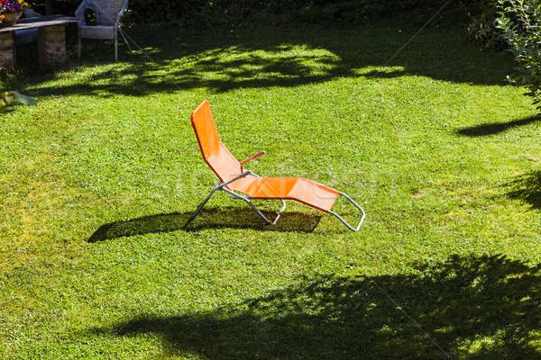 Pusty słońce ogród wiosną krajobraz piękna Zdjęcia stock © meinzahn