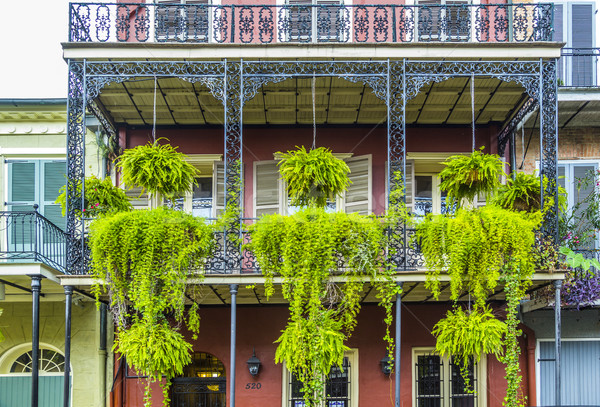 balcony with green flowers in the old part of New Orleans Stock photo © meinzahn