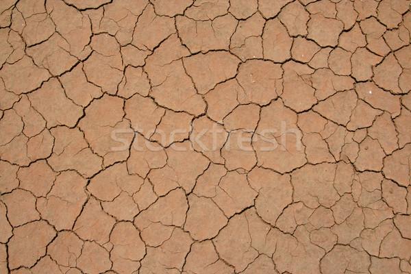 ひびの入った 泥 テクスチャ 背景 砂漠 ストックフォト © meinzahn