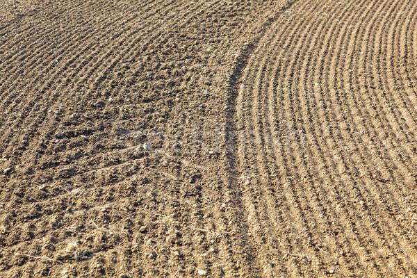 Campo primavera agricultura suelo cosecha Foto stock © meinzahn