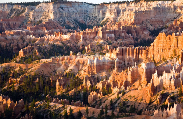 Unique and colorful hoodoo rock formations in the Bryce Canyon  Stock photo © meinzahn