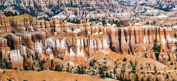 bryce canyon with spectacular hoodoos in sunrise Stock photo © meinzahn