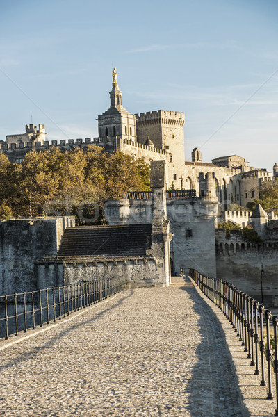 Pont Saint-Benezet in Avignon  with view to popes palace Stock photo © meinzahn