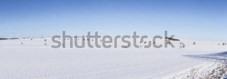 Schilderachtig winter landschap natuur sneeuw berg Stockfoto © meinzahn
