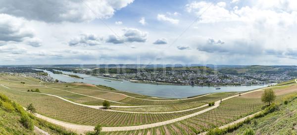 rhine valley with view to Bingen over vineyards Stock photo © meinzahn