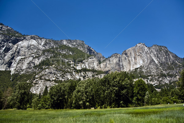 famous rock formation in the romantic valley of yosemite park Stock photo © meinzahn