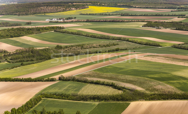 view of agricultural landscape  at vienna Stock photo © meinzahn