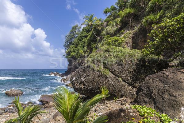 scenic landscape in Dominica  Stock photo © meinzahn
