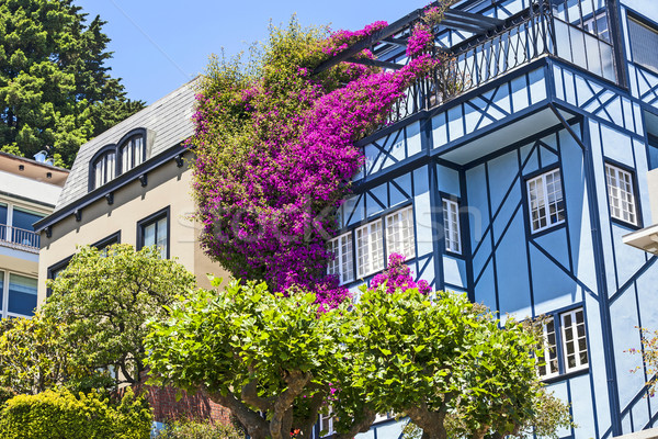 View of Lombard Street, the crookedest street in the world, San  Stock photo © meinzahn