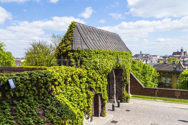 Główny bramy królewski zamek Polska Zdjęcia stock © meinzahn