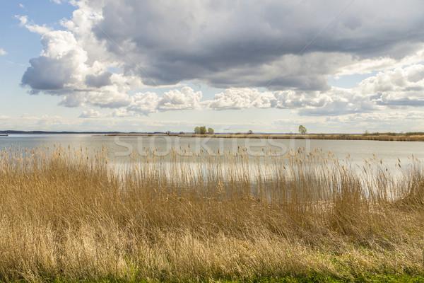 Mar báltico natureza azul lago etapa europa Foto stock © meinzahn
