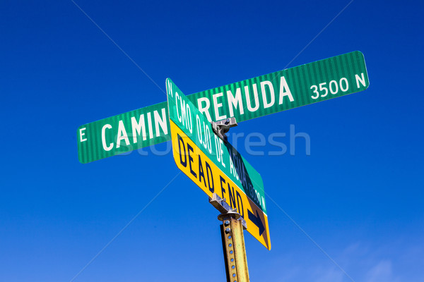 street names on green signs under blue sky in Tuscon Stock photo © meinzahn