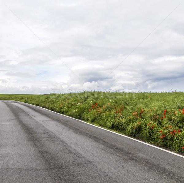 road in rural Eifel landscape with fields Stock photo © meinzahn