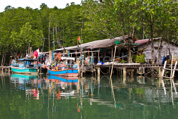 huts at the mangrove everglades in a small fishermans village in Stock photo © meinzahn