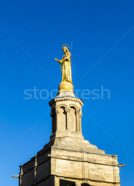 skyline of Avignon with gothic building of the popes palace Stock photo © meinzahn