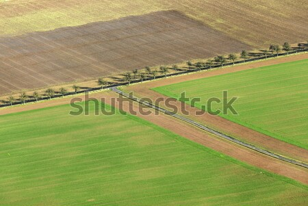 rural area in the Kyffhaeuser region in Thuringia Stock photo © meinzahn