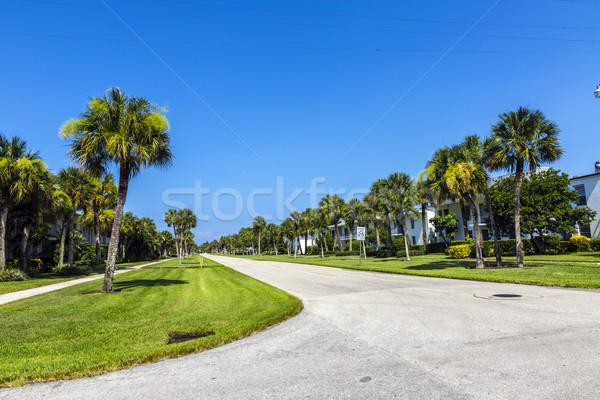 Rues palmiers vie Naples belle ciel Photo stock © meinzahn