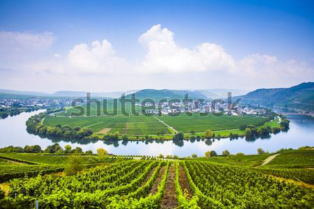Moselle river loop in Trittenheim, Germany. Stock photo © meinzahn