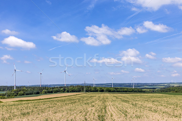 パノラマ 表示 風 空 草 自然 ストックフォト © meinzahn