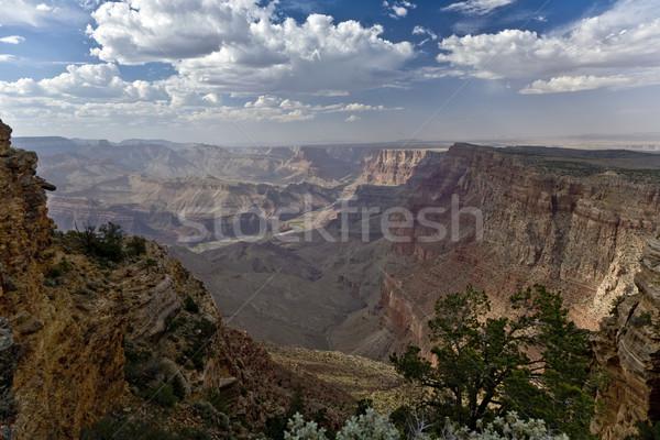 Grand Canyon nascer do sol rio Colorado verão azul Foto stock © meinzahn
