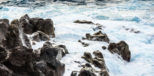 coast with Stones of volcanic flow and ocean Stock photo © meinzahn