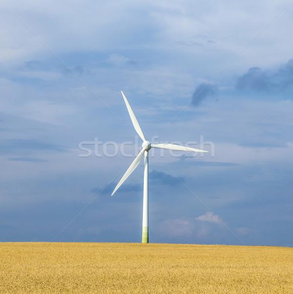 風 ジェネレータ 持続可能な エネルギー 夏 ストックフォト © meinzahn
