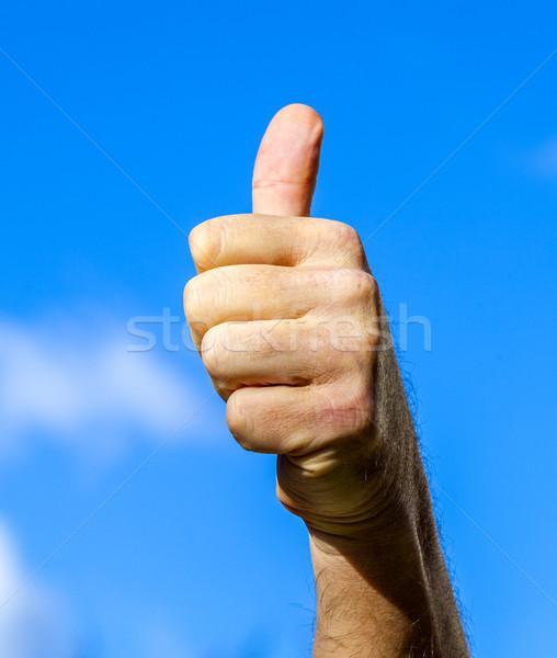 Remek kézjel kék ég szív háttér pálma Stock fotó © meinzahn