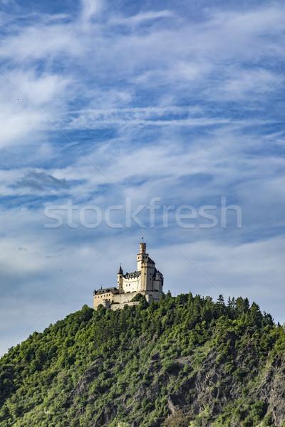 famous Marksburg in the Rhine valley Stock photo © meinzahn