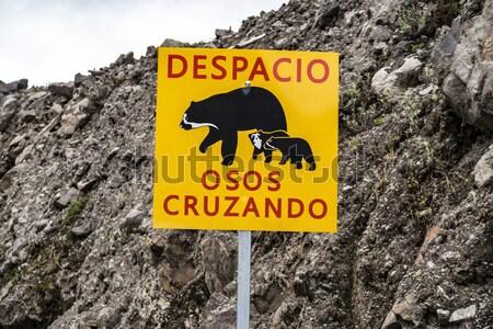 Danger sign, Speeding kills Bears Stock photo © meinzahn