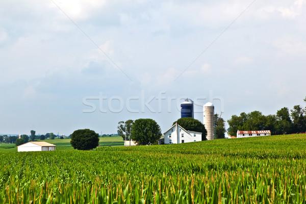Granja casa campo hermosa paisaje puesta de sol Foto stock © meinzahn