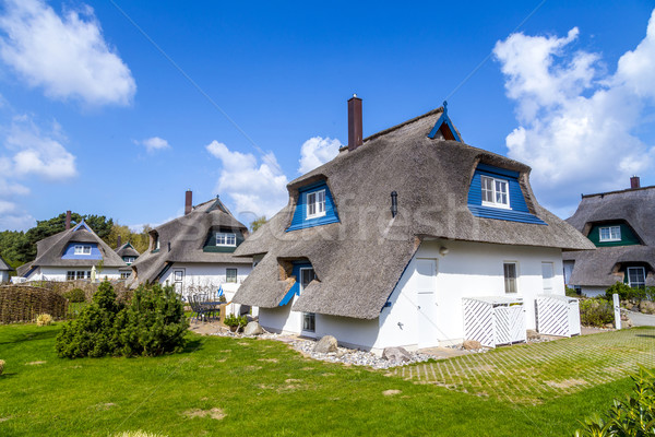 typical village house with reed roof in Usedom  Stock photo © meinzahn
