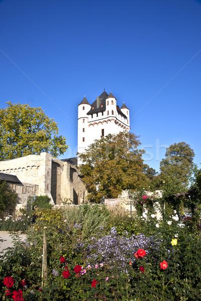famous tower of Eltville castle  Stock photo © meinzahn