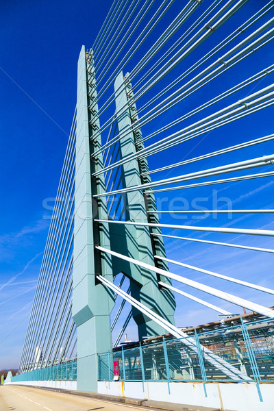 Híd ipar park gyönyörű tájkép Frankfurt Stock fotó © meinzahn