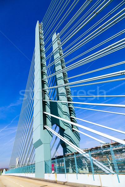 Ponte industria parco bella panorama Francoforte sul Meno Foto d'archivio © meinzahn
