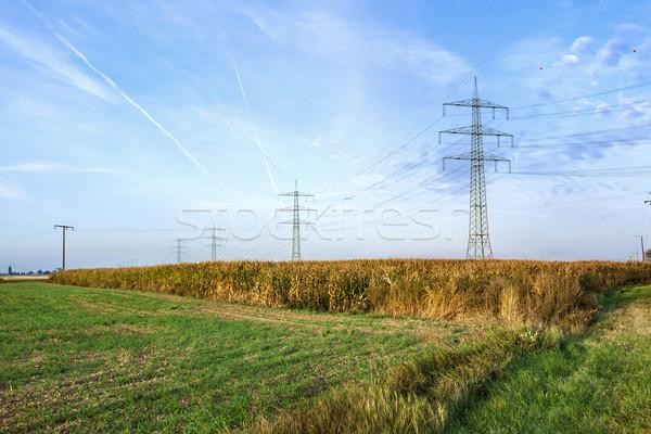 Nascer do sol campo elétrico blue sky Foto stock © meinzahn