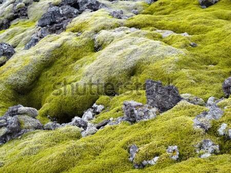 Mech wyspa zielone rock Zdjęcia stock © meinzahn