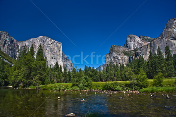 view to western rocket plateau of yosemite national park Stock photo © meinzahn