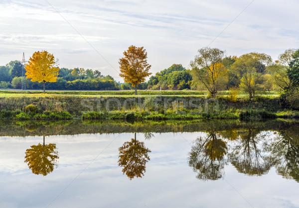 Stock fotó: Tükröződés · fák · folyó · víz · fa · természet