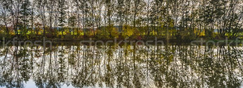 Stock fotó: Tükröződés · fák · folyó · gyönyörű · naplemente · tájkép