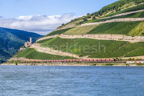 beautiful vineyards at  the rhine valley in Ruedesheim with trai Stock photo © meinzahn