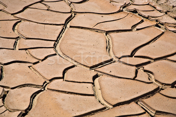 Foto stock: Secas · rachado · lama · para · cima · enseada · deserto
