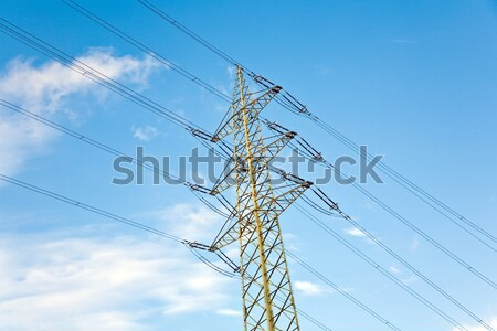 tower for electricity in rural landscape under blue sky Stock photo © meinzahn