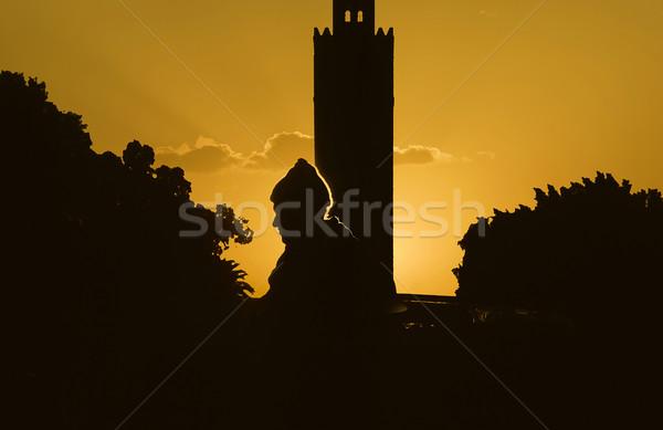 Perfil hombre puesta de sol Marruecos espectacular cielo Foto stock © meinzahn