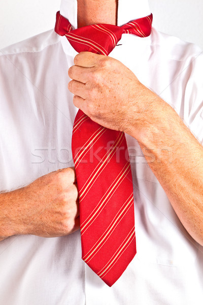 man binding his tie Stock photo © meinzahn