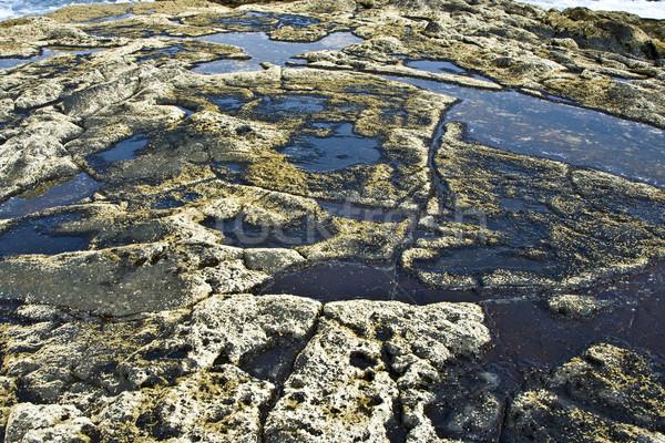 Güzel taş yapı sahil hat arka plan Stok fotoğraf © meinzahn