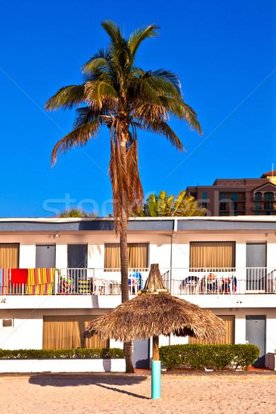 Art deco gebouw zuiden Miami bloemen zon Stockfoto © meinzahn