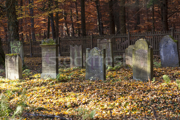 old jewish cemetery in the oak forest Stock photo © meinzahn