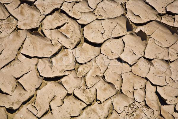 ひびの入った 泥 アップ 小川 砂漠 ストックフォト © meinzahn
