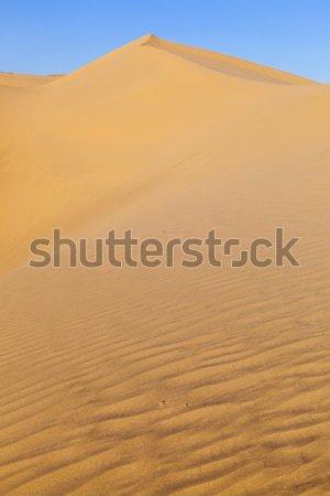 Duin zonsopgang woestijn mooie licht achtergrond Stockfoto © meinzahn